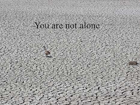 Gary Canant - You Are Not Alone Greeting Card