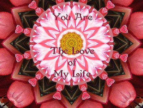 Lori Kingston - You Are the Love of My Life