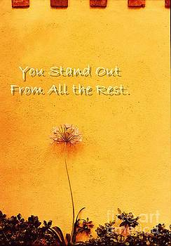 Sharon Williams Eng - You Stand Out
