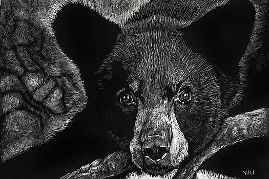 Young Black Bear by William Underwood