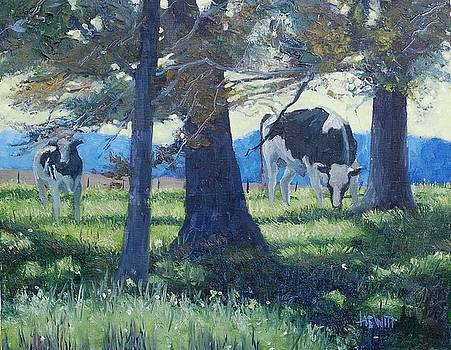 Young Bulls 2 by Philip Hewitt
