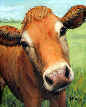 Young Jersey Cow in Field by Dottie Dracos