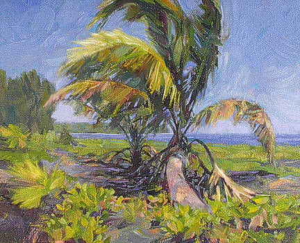 Young Palm by Rod Cameron