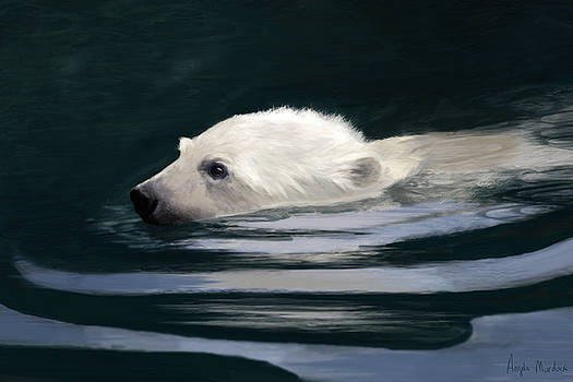 Angela Murdock - Young Polar Bear Swimming