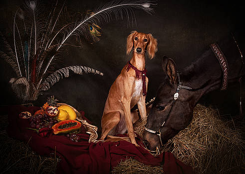 Young Saluki dog with a horse by Tanya Kozlovsky