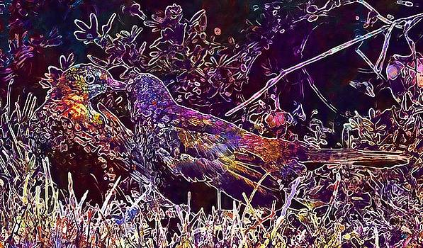 Young Star Star Bird  by PixBreak Art