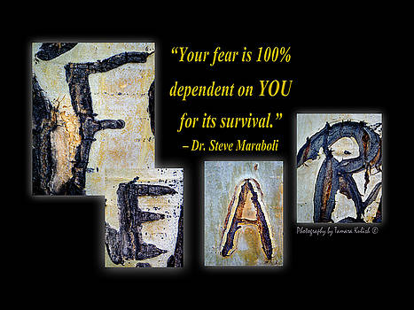 Tamara Kulish - Your Fear Is 100 percent  Dependent On YOU  For Its Survival
