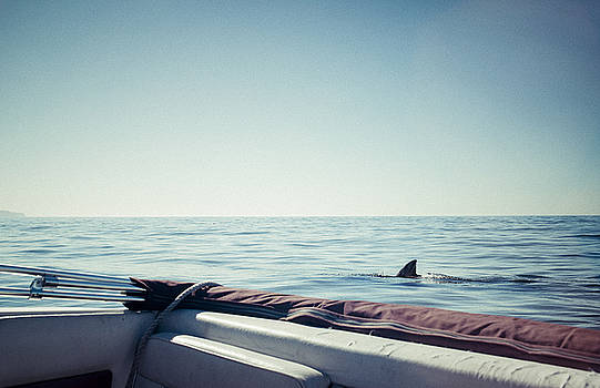 You're gonna need a bigger boat by Justin Carrasquillo