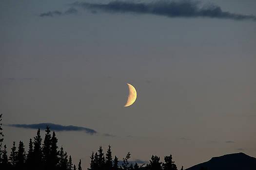 Yukon Moon by Kimberly VanNostrand