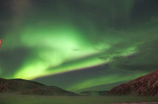 Yukon Northern Lights 2 by Phyllis Spoor