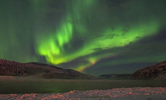 Yukon Northern Lights 4 by Phyllis Spoor