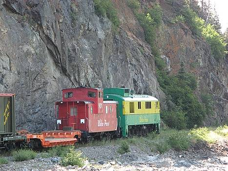 Yukon White Pass Train by Cheri Carman
