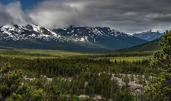 Yukon Wilderness by Ed Clark