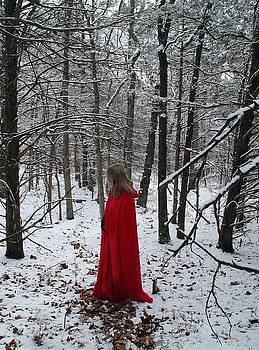 Alana  Schmitt - Yule Maiden