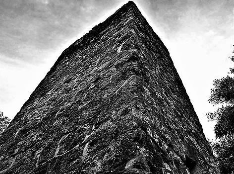 Yule Sugar Mill Ruins by Mario Carta
