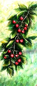 Yummy cherries by Raya Finkelson
