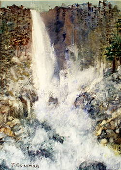 Yupo Falls by Terry Sussman