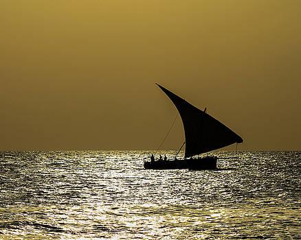 Zanzibar Dhow Coming Home by Diane Geddes