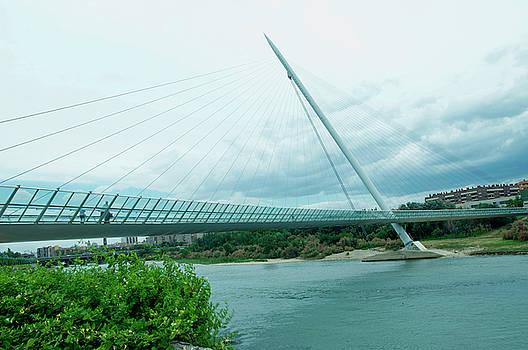 Zaragoza Bridge by Tamara Sushko