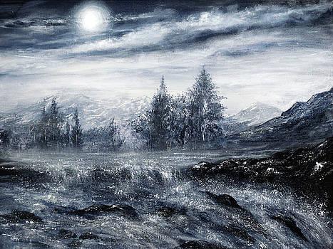 Zealous Waters by Ann Marie Bone