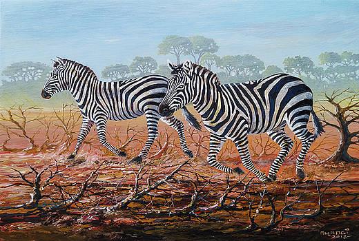 Zebra Crossing by Anthony Mwangi