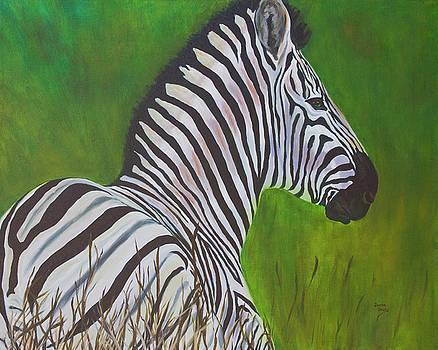 Zebra by Donna Drake