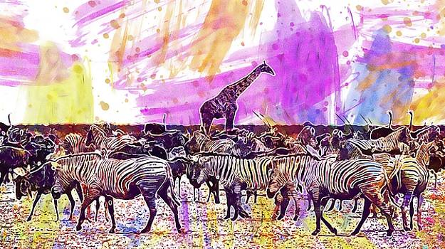 Zebra Gnu Giraffe Africa Namibia  by PixBreak Art