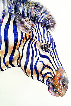 Zebra in Blue by Arti Chauhan