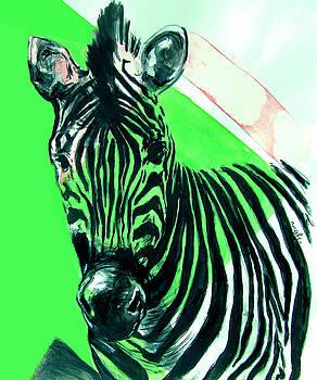 Zebra in Green by Rene Capone