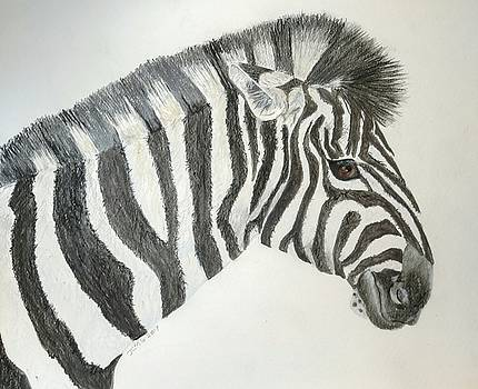 Zebra by Joan Mansson