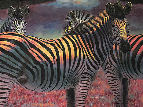 Zebra by Jon Hunter