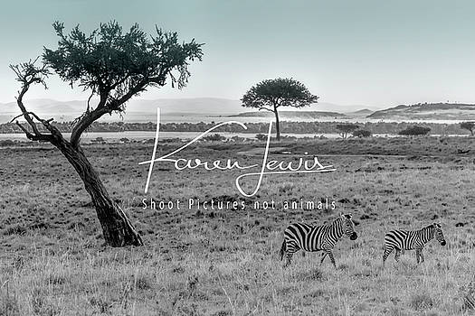 Zebra Mother and Child on the Mara by Karen Lewis