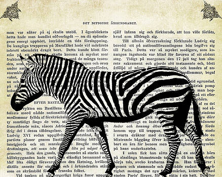Zebra on Vintage Textured Book Page by Greg Noblin