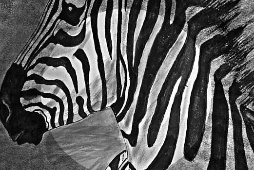 Regina Arnold - Zebra