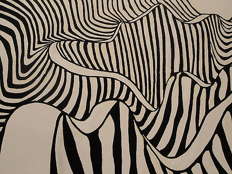 Zebra Road by Stephen Ponting