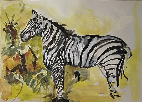 Zebra Study by Colette Wirz