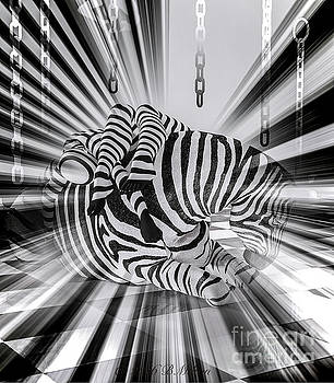 Zebra Time by Barbara Milton