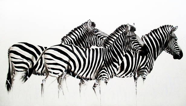 Zebras - Black and White by Tracey Armstrong
