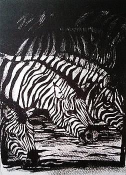 Jamey Balester - Zebras Drinking