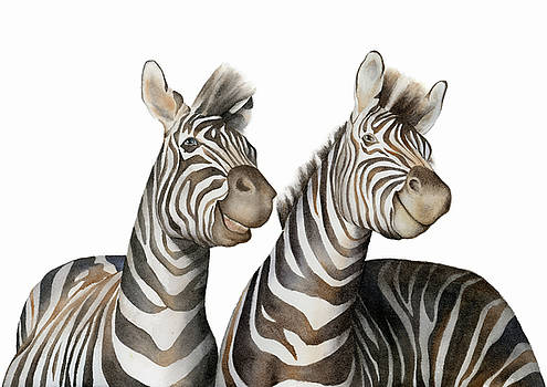 Zebras Watercolor by Taylan Apukovska