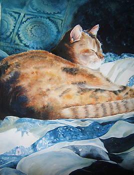 Zen Callie Cat by Doris Daigle