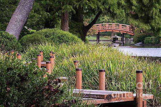 Zen Garden by Andrea Silies