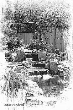 Zen Garden by Anne Pendred