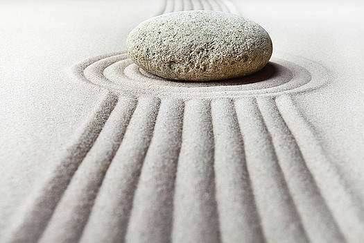 Zen Garden - Focus by Dirk Ercken