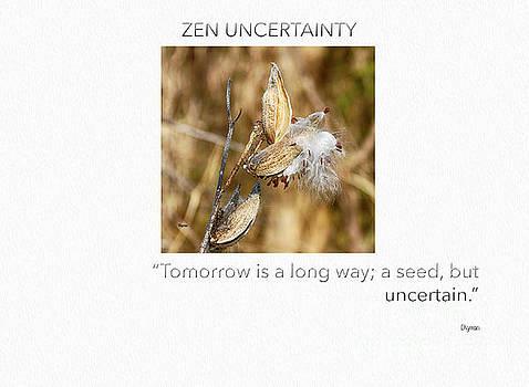Zen Uncertainty  by Steven Digman
