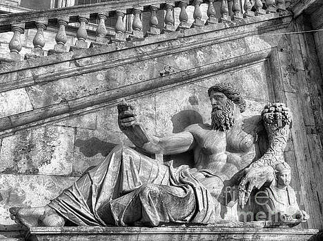 Zeus black and white by Stefano Senise