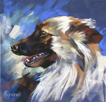 Zeus by Rae Andrews