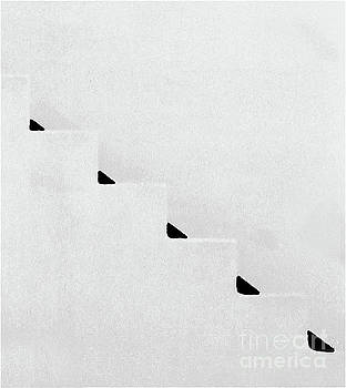 Sharon Williams Eng - Zig Zag Black and White