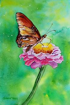 Zinnia Allure by Celene Terry