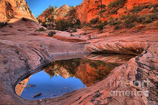 Adam Jewell - Zion East Canyon Reflections